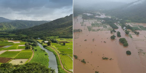 Hanalei Before and After Flooding