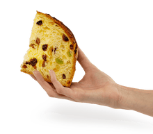 Load image into Gallery viewer, Panettone Classico A.D. 1476, By Loison 750 grams - 1 lb 10.4 oz