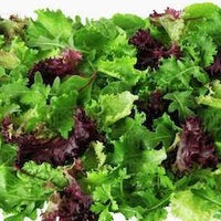 Salad - mixed leaves