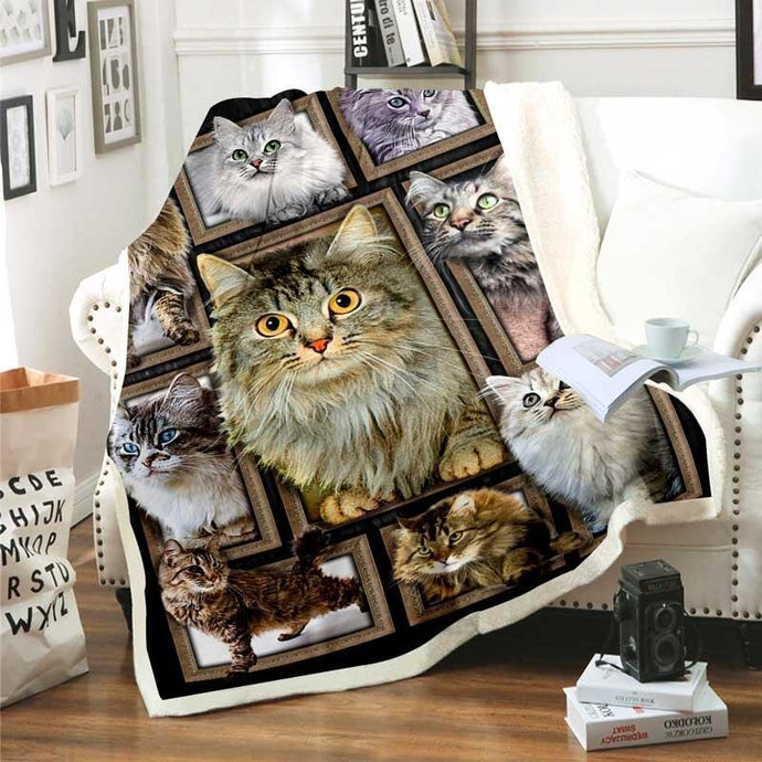 Cats Sherpa Blanket