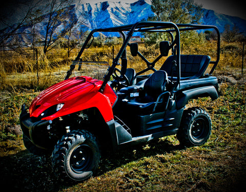 Kawasaki Teryx Backseat and Roll Cage Kit