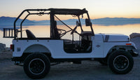 ROXOR  Roll Cage and Backseat kit