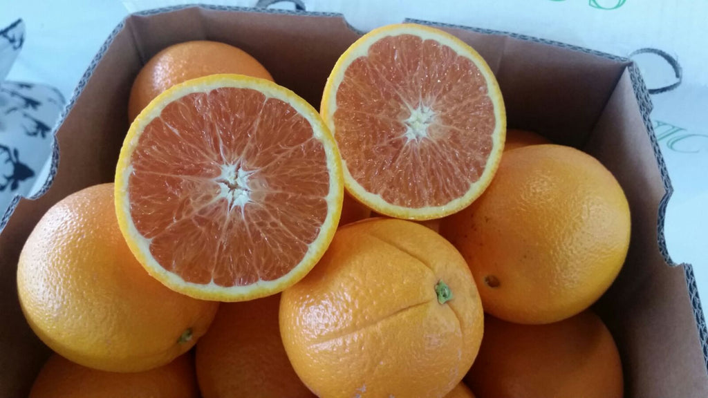 Oranges - Cara Cara - New Season (Organic) - Green Mumma