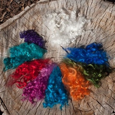 Mohair Curly Locks for Felting or Crafts
