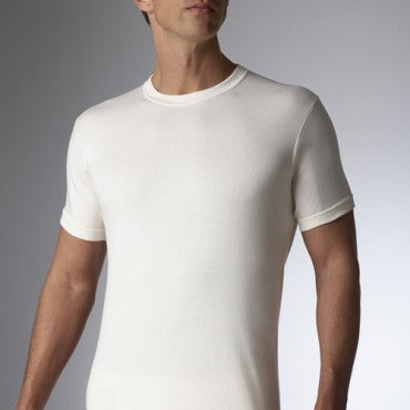 Wool T-Shirt by Stanfield's 4311