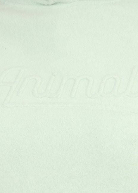 Animal Caio Hoody - Harbour