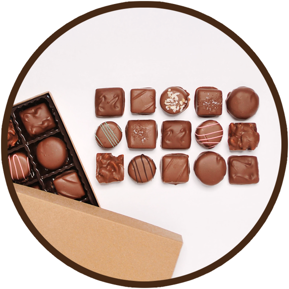 Assortment of handmade milk chocolates in a small gift collection.
