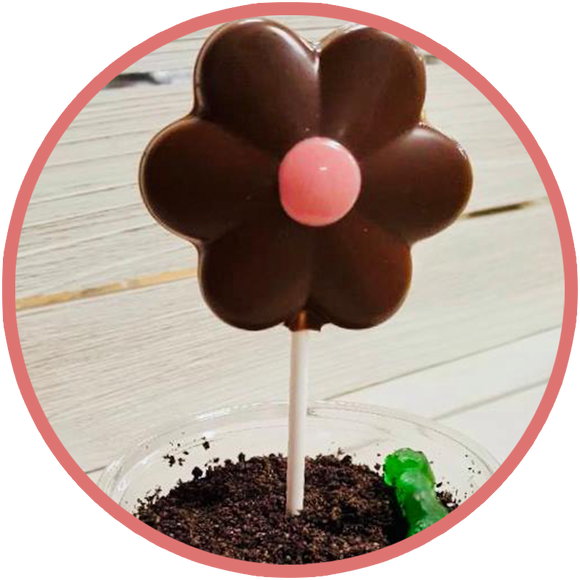 Plant a chocolate flower with a gummy worm and oreo cookie dirt. Instructions online!