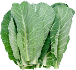 Greens Collard (Bunch)