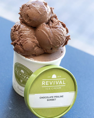 chocolate hazelnut vegan sorbet