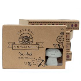 Soy Wax Melts 6 pack Dark Patchouli