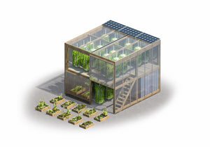 The Future Of Urban Farming