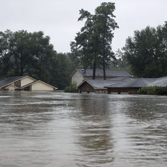 Mississippi Flood Health effects observed during and after floods include injuries, infections, poisoning and greater mental-health problems