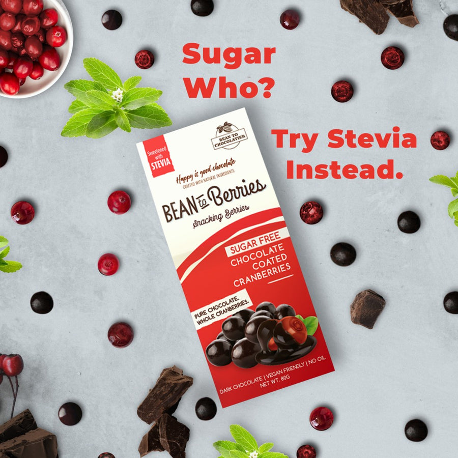 bean-to-berries-vegan-chocolate-coated-cranberries-sugar-free