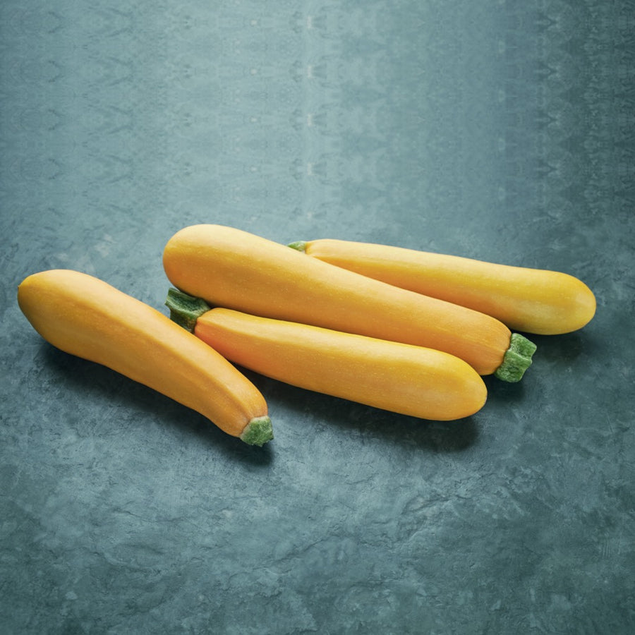 trikaya-organic-vegetables-yellow-zucchini
