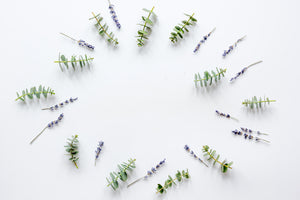 Here's Why You Should Add Eucalyptus and Lavender to Your Daily Regimen