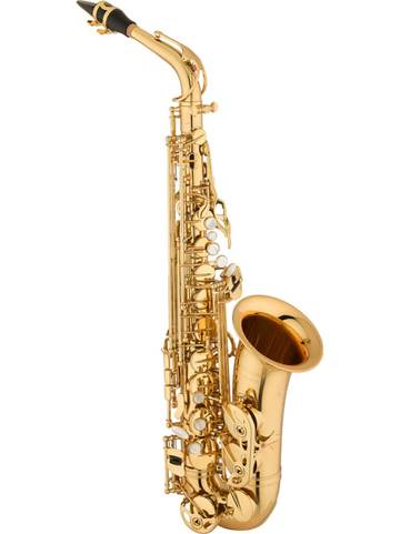 Brass & Woodwind Instruments