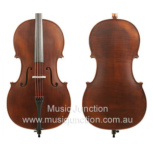 Gliga 2 Full Size Cello Package