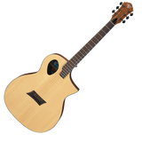 Michael Kelly Guitars Forte Port Acoustic