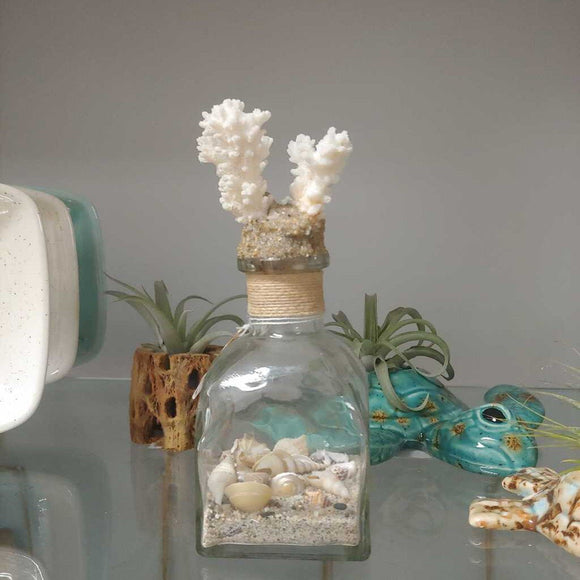 Small Coral Beach Bottle