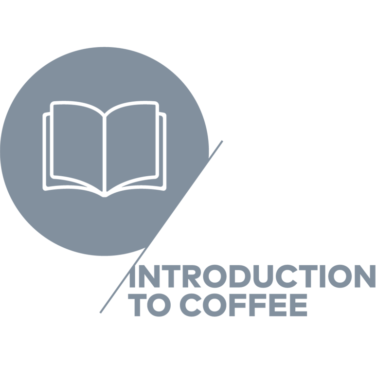 Specialty Coffee Association, Coffee Skills Program, Introduction to Coffee, Coffea School