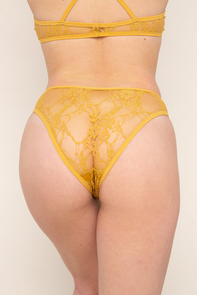 Lace Cheeky Underwear - Honey