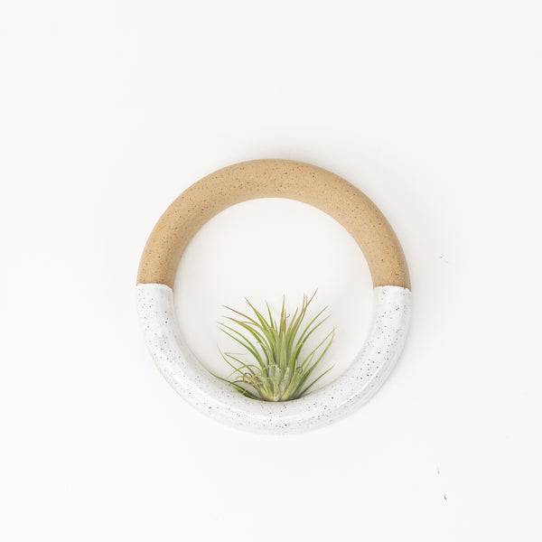 Specked White Sweet Roll Airplant Hanger
