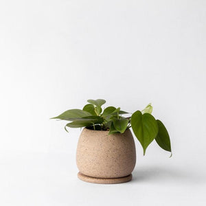 Small Standing Planter with Saucer - Speckle