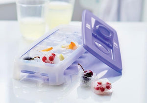 Cool Cubes - TUPPERWARE FRANCE