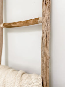 White Wood Ladder (Local Delivery Only) - Leyland Blue