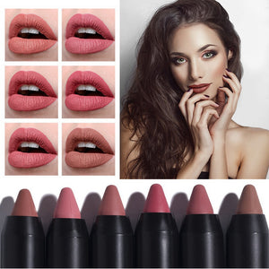 Long-Lasting Waterproof Matte Lipstick (12 Pcs)