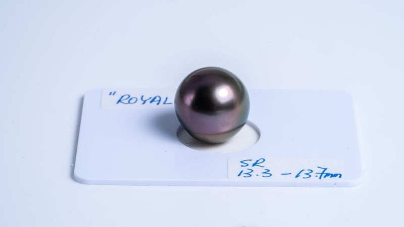 "13mm ""ROYAL"" Semi-Round Tahitian Pearl"