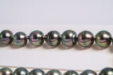 "42pcs Peacock ""Pommes"" Necklace - Circle 8-9mm AAA quality Tahitian Pearl"
