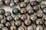 LOT 127 - BUY Tahitian Pearls jewellery wholesale - CMWPEARLS.COM