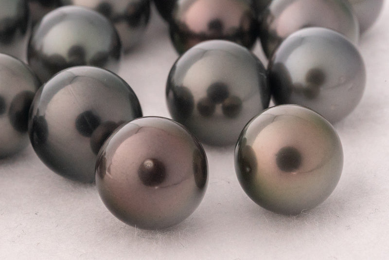 LOT 136 - BUY Tahitian Pearls jewellery wholesale - CMWPEARLS.COM