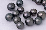 LOT 489 - BUY Tahitian Pearls jewellery wholesale - CMWPEARLS.COM