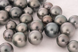 LOT 156 - BUY Tahitian Pearls jewellery wholesale - CMWPEARLS.COM