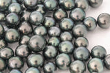 LOT 233 - BUY Tahitian Pearls jewellery wholesale - CMWPEARLS.COM