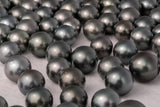LOT 191 - BUY Tahitian Pearls jewellery wholesale - CMWPEARLS.COM