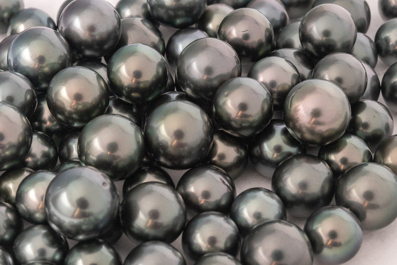 LOT 246 - BUY Tahitian Pearls jewellery wholesale - CMWPEARLS.COM
