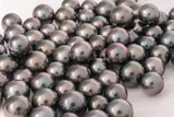 LOT 262 - BUY Tahitian Pearls jewellery wholesale - CMWPEARLS.COM
