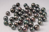 LOT 305 - BUY Tahitian Pearls jewellery wholesale - CMWPEARLS.COM