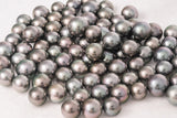 LOT 269 - BUY Tahitian Pearls jewellery wholesale - CMWPEARLS.COM