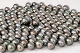 LOT 266 - BUY Tahitian Pearls jewellery wholesale - CMWPEARLS.COM