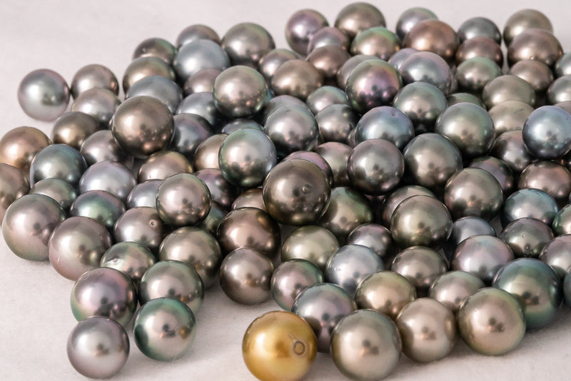 LOT 125 - BUY Tahitian Pearls jewellery wholesale - CMWPEARLS.COM