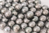 LOT 285 - BUY Tahitian Pearls jewellery wholesale - CMWPEARLS.COM