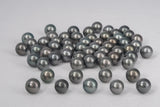 LOT 469 - BUY Tahitian Pearls jewellery wholesale - CMWPEARLS.COM