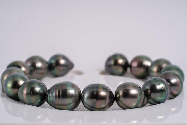 "15pcs ""Peacock Chronicles IV"" Bracelet - Circle 10mm AAA/AA quality Tahitian Pearl"