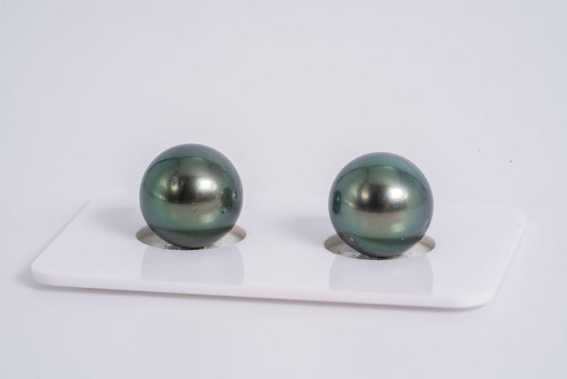 Blue Green Pearl 11mm Matched Pair - Round AA/A quality Tahitian Pearl Earrings