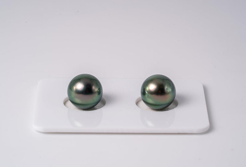 Peacock Matched Pair - R/SR 10mm AAA quality Tahitian Pearl Earrings